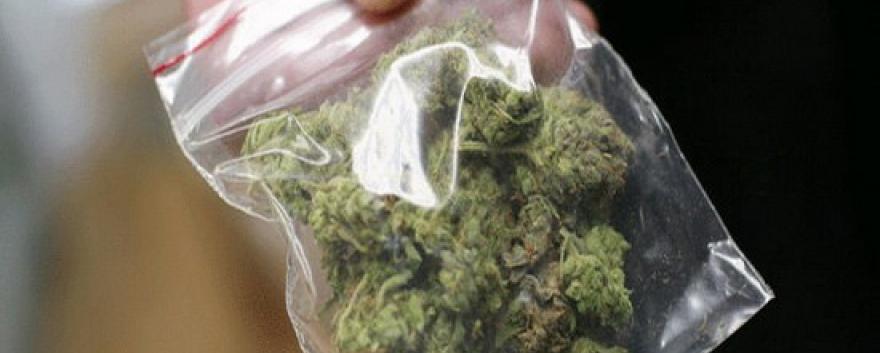 Торговец марихуаны семена канабиса заказать почтой